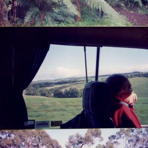 In viaggio verso le grandi felci della foresta pluviale. Il prof Volterra è assorto nei suoi pensieri (Australia, Congresso mondiale di psicofarmacologia, CINP, 23-27  giugno 1996)