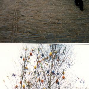 Praga -  Donatella Marazziti a vicolo d'oro V Incontro della scuola Toscana di Psichiatria (Praga, Cecoslovacchia, 18-21 Marzo, 1999)