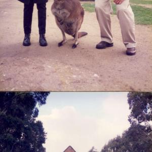 In viaggio tra i canguri con Stefano Pallanti (Australia, Congresso mondiale di psicofarmacologia, CINP, 23-27  giugno 1996; Australia)